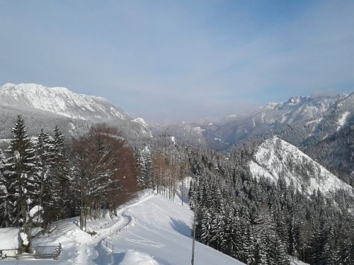 Priporočila za obiskovalce destinacije Logarska dolina-Solčavsko